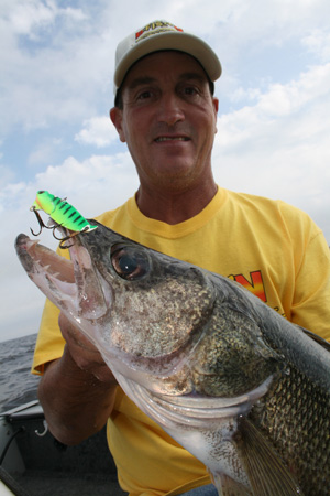 A Chartreuse B3 Blade is the ticket for Fall walleye!